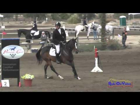 443S Clayton Fredericks On Quintano Open Novice Show Jumping Galway Downs November 2014