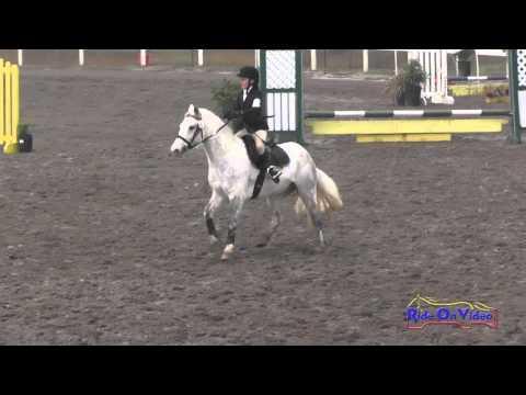 211S Amanda Boyce On Sean O'Connor Intro Show Jumping FCHP November 2015