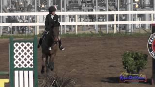 208S Nahmi Jones on Smokey Half SR Novice Show Jumping FCHP February 2015