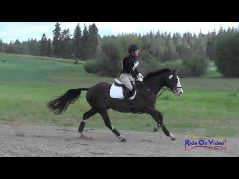 213XC Leigh Mesher On Finally DG Open Training Cross Country Spokane Sport Horse HT May 2016