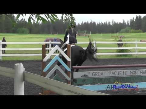 243S Jenna Lounsbery On Kellican JR/YR Training Show Jumping Spokane Sport Horse HT May 2016