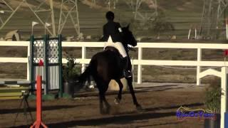 197S Olivia Byron Cooper on Augustus Intro Show Jumping FCHP November 2014