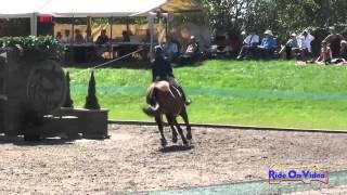 040S Rebecca Braitling on Great Bourton CCI1* Show Jumping The Event at Rebecca Farm July 2014