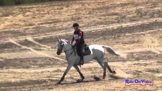 140XC Taylor Lindsten on Sunny Delight Training Horse Cross Country Woodside August 2014