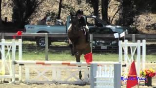 241S Caitlin Davison On My Pilot Open Beginner Novice Show Jumping Shepherd Ranch June 2015