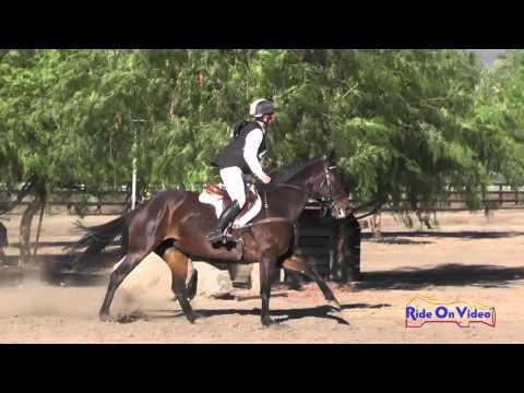 385XC Chloe Smyth On Swizzle Novice Horse Cross Country Galway Downs November 2015