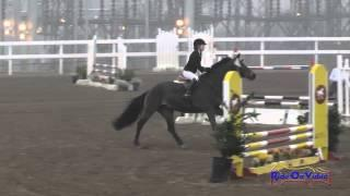 147S Kelly Thoits on Facile JR Beginner Novice Show Jumping FCHP November 2014