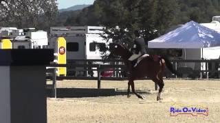 042S Erin Kellerhouse on Tiz When CIC1* Show Jumping Woodside Int'l Event Oct 2014