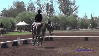310D Cassidy Wallace on Discover Me JR Beginner Novice Dressage Copper Meadows September 2014