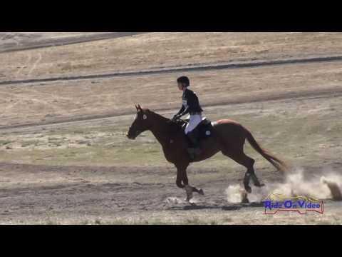 318XC Emily Robertson On Gift Exchange Novice Horse Cross Country Woodside October 2016