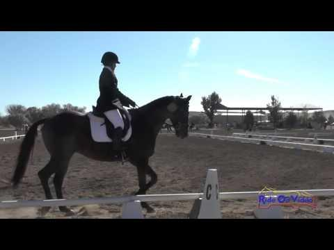 129D Marta Tabatabai On Court Jester SR Training Dressage Twin Rivers Ranch Sept 2015