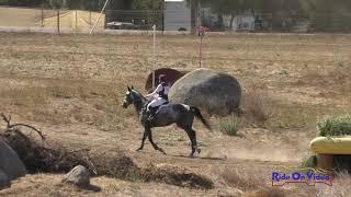 075XC Lindsey Smith on Lucky Sun Open Novice Cross Country Copper Meadows Sept. 2020
