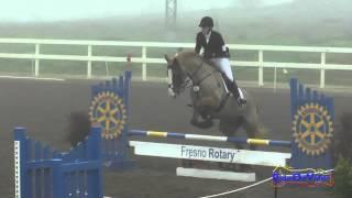 016S2 Tinsley Cohen on Moyglare Clover Beginner Novice Show Jumping Round 2 FCHP January 2015