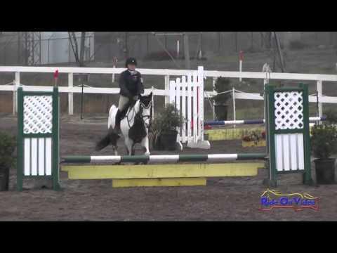 203S Caroline Cox On V.C. Twist Intro Show Jumping FCHP November 2015