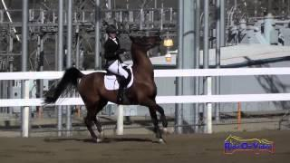 025S Hayley Baker on With A Little Luck JR Training Show Jumping FCHP November 2014