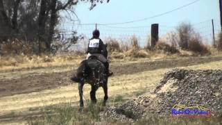 169XC Gabrielle Paredes on Crescendo JR Beginner Novice Cross Country FCHP April 2015