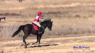 277XC Angela Cricelli Area VI Championships Novice Rider Cross Country Woodside Int'l Event Oct 2014