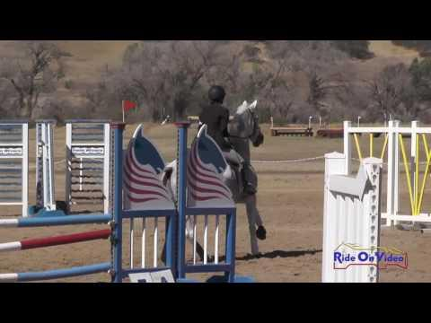 442S Jana Jones Lally On He's All That Open Novice Show Jumping Twin Rivers Ranch Sept. 2016