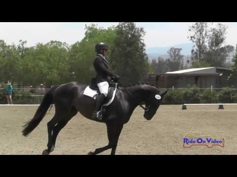 144D Lisa Sabo On Matakee Open Novice Dressage Copper Meadows June 2016