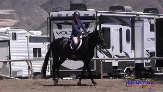 425 Jacqueline Attwood Dupont on Brave 111C AM Owner Hunters 3'6 TVNHS April 2018