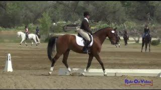 431D Tina Waters on Peregrine SF YEH 5Yr Old Dressage Twin Rivers Ranch April 2015
