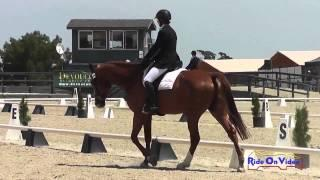 049D Jeanine Allred on Goldquest Preliminary Challenge Horse Dressage Woodside May 2014