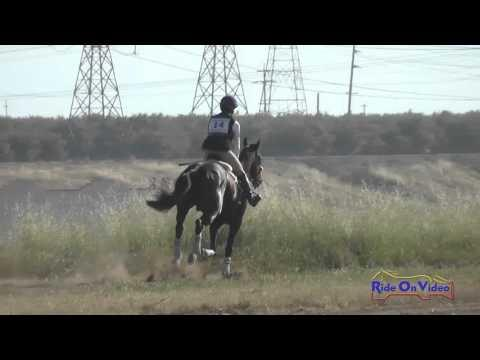 014XC Amanda Volle On Jackie O' Open Preliminary Cross Country FCHP April 2016