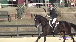 011S Andrea Baxter on Indy 500 CIC3* Show Jumping Woodside Int'l Event Oct 2014