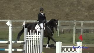 092S Stacey Winter On Serenade Open Preliminary Show Jumping Shepherd Ranch June 2015