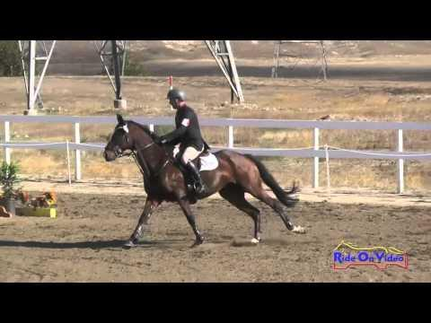 020S Earl McFall On Dinero Open Preliminary Show Jumping FCHP October 2015