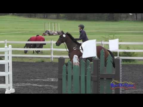 152S Vangie Crago On Robert The Bruce SR Novice Show Jumping Spokane Sport Horse HT May 2016