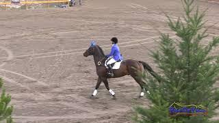 081S Elizabeth Linde on Pie and Ice Cream Open Preliminary Show Jumping Aspen Farms Sept.2018