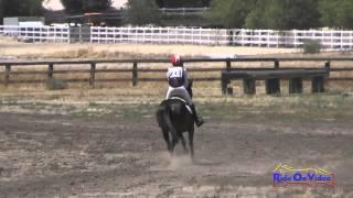 211XC Lindsey Payne On Zazou Open Beginner Novice Cross Country Galway Downs May 2015