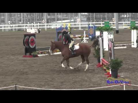 210S Tracy Alves On Kilkea Castle Intro Show Jumping FCHP November 2015