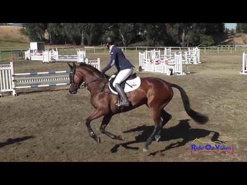 031S Tamra Smith On MB MaiBlume Open Training Show Jumping Shepherd Ranch June 2016