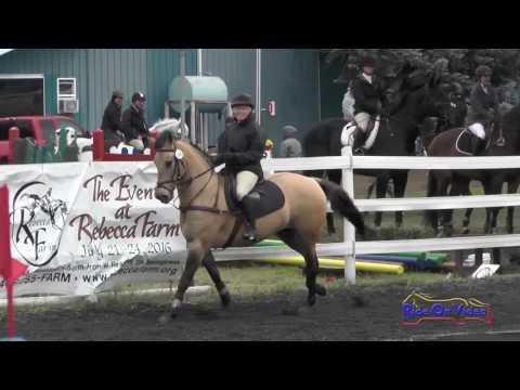 164S Helen Morrison On Chiquita SR Novice Show Jumping Spokane Sport Horse HT May 2016