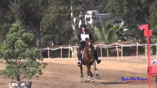 269XC Lorie Haynes on High Hopes Novice Rider Cross Country Copper Meadows September 2014