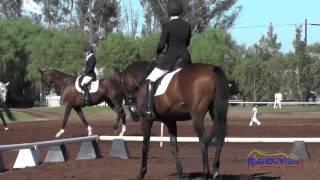 147D Stephanie McDaniel on Mac Attack Preliminary Rider Dressage Copper Meadows September 2014