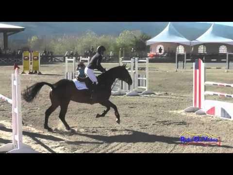019S Kelly Pugh On Corazon CIC2* Show Jumping Woodside Oct 2015