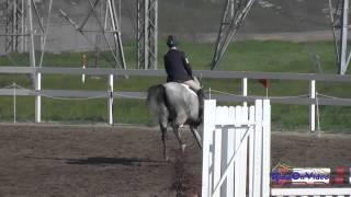 235S Jolie Wentworth on KF Chelada Novice Horse Show Jumping FCHP February 2015
