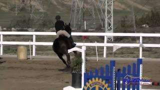 095S Anna Nowak on Double Click SR Novice Show Jumping FCHP November 2014