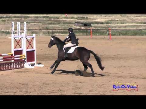 406S Sophia Wilcox On Optimist II SR Beginner Novice Show Jumping Twin Rivers Ranch April 2016