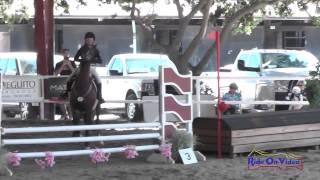 053E2 Cassidy Wallace on Discover Me Beginner Novice Eventing Pacific Indoor Eventing October 2014