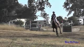 033XC Teresa Harcourt on Miss Fantastic Preliminary Cross Country Woodside August 2014