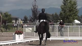 139D Becky Farrell on Gia Open Preliminary Dressage The Event at Rebecca Farm July 2014