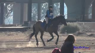 108XC Brianna Davis on Palace Verdes JR Novice Cross Country FCHP November 2017