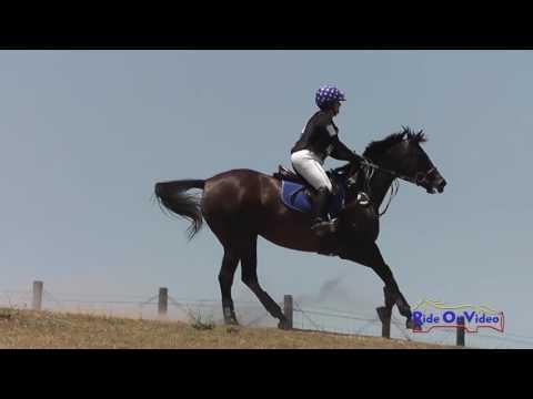 139XC Michelle Cooley On Starlite Event Open Beginner Novice Cross Country Shepherd Ranch June 2016