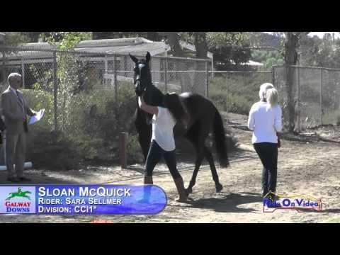 107J1 Sara Sellmer On Sloan McQuick CCI1* FEI Jog 1 Galway Downs November 2015