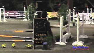 078E1 Lynn Carlson on Simpatico Preliminary Eventing Pacific Indoor Eventing October 2014