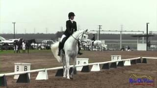 007D Logan Bearden Intermediate Dressage Fresno County Horse Park Jan 2013